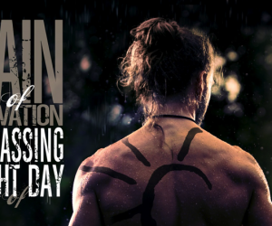 pain of salvation passing light of day